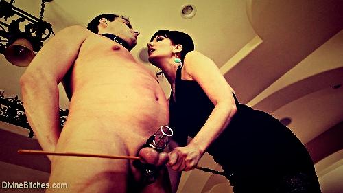 negazione orgasmo la mia mistress è fantastica